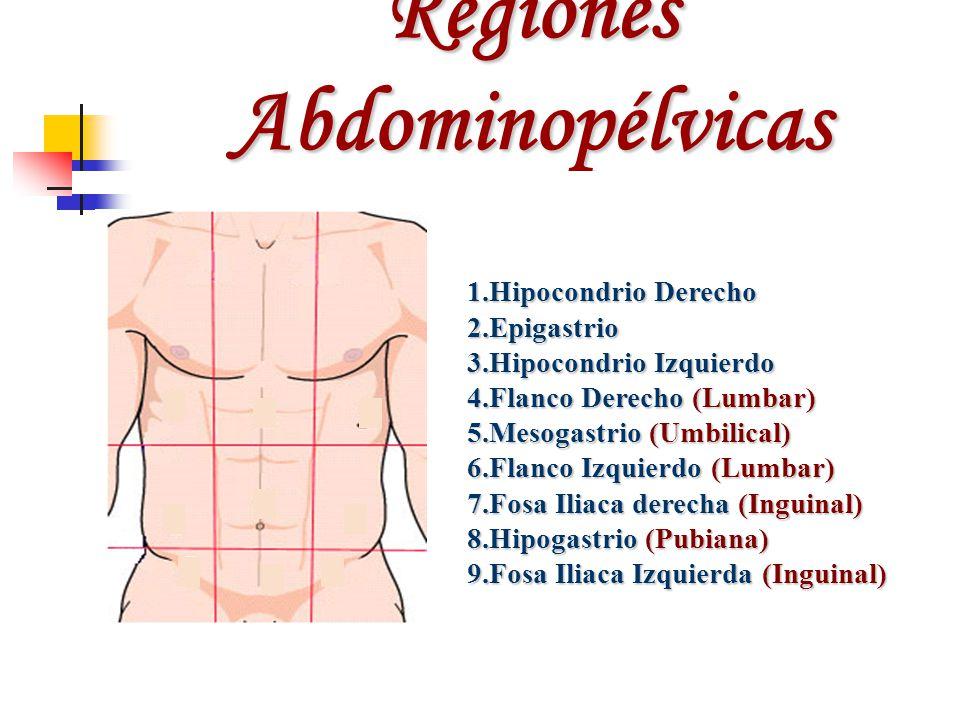 Regiones Abdominopélvicas