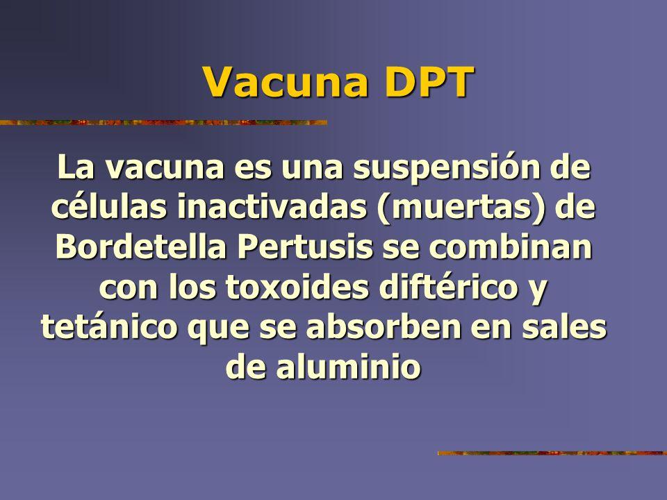 Vacuna DPT