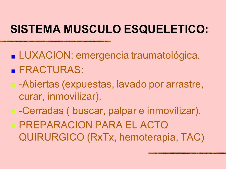 SISTEMA MUSCULO ESQUELETICO: