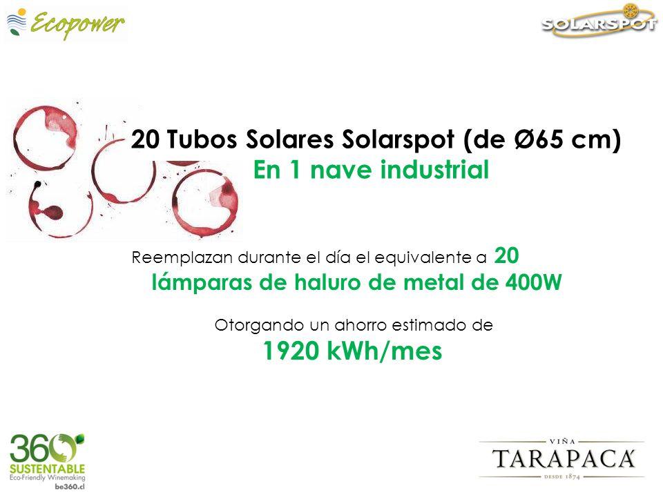 20 Tubos Solares Solarspot (de Ø65 cm) En 1 nave industrial