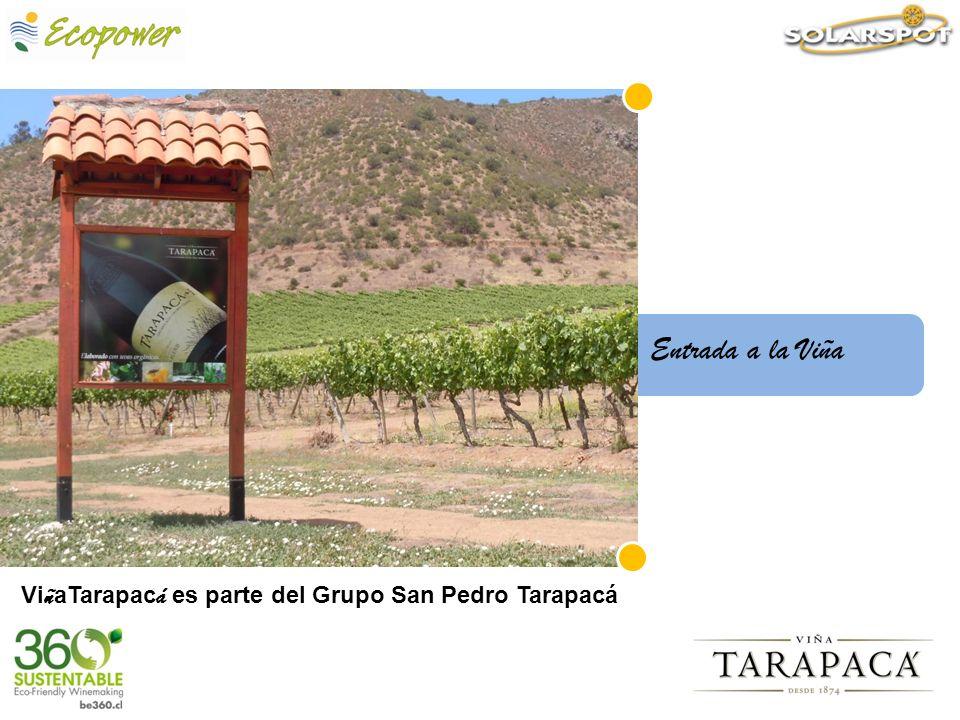 Entrada a la Viña ViñaTarapacá es parte del Grupo San Pedro Tarapacá