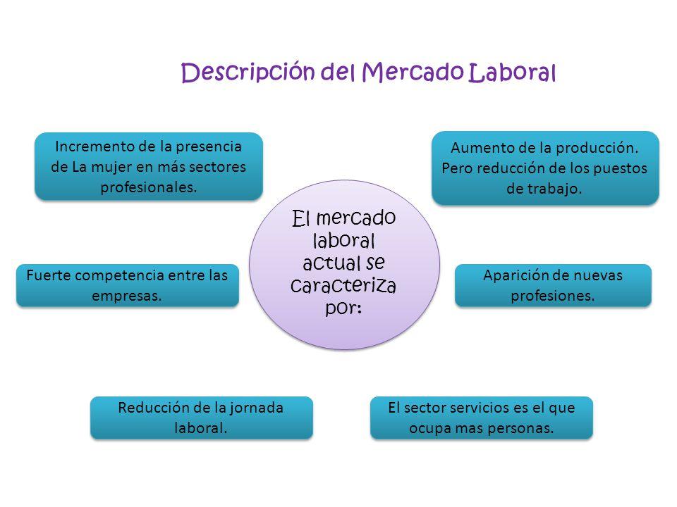 Descripción del Mercado Laboral