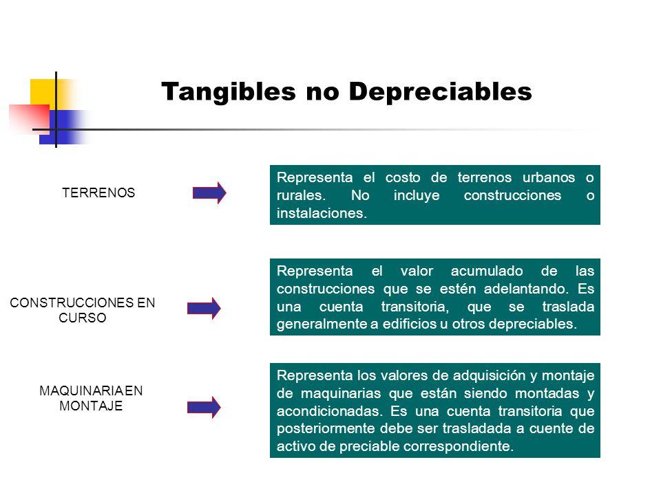 Tangibles no Depreciables
