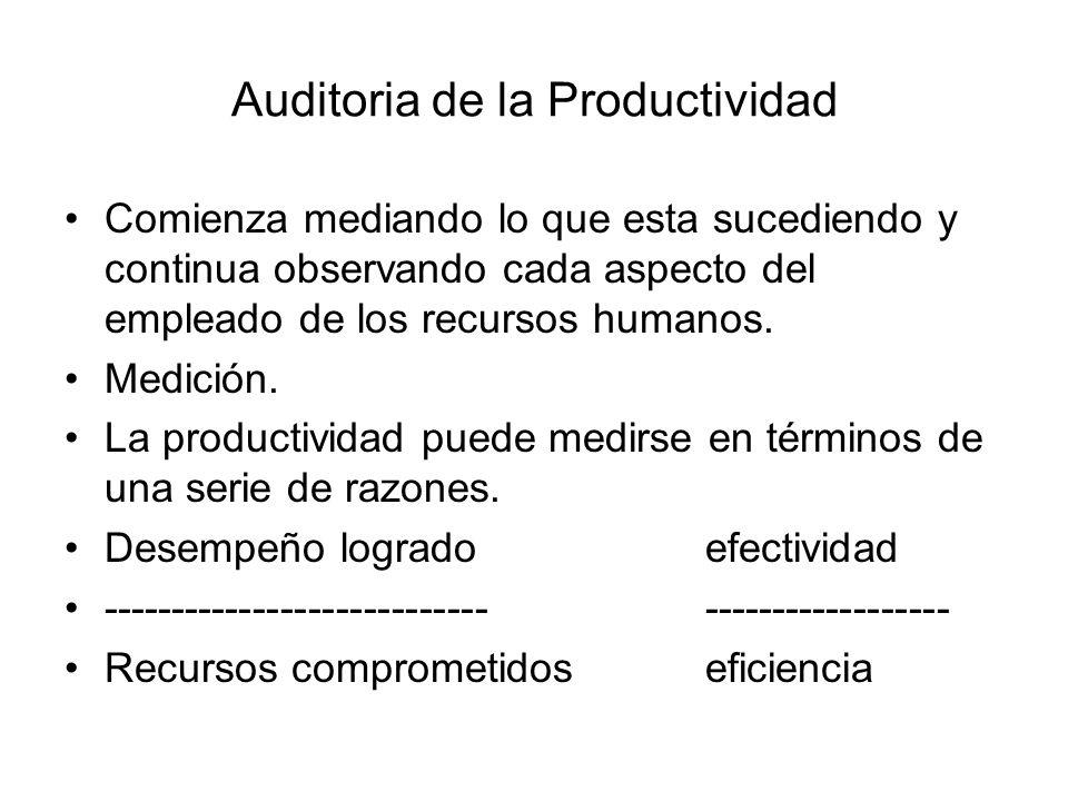 Auditoria de la Productividad