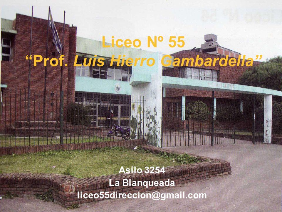 Liceo Nº 55 Prof. Luis Hierro Gambardella