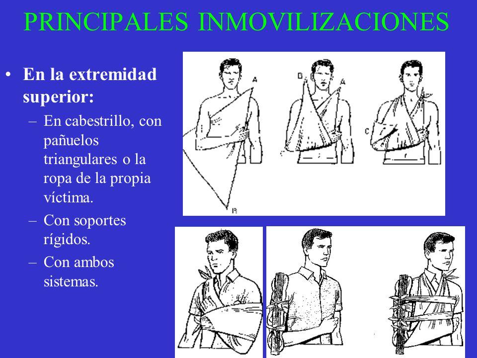 PRINCIPALES INMOVILIZACIONES