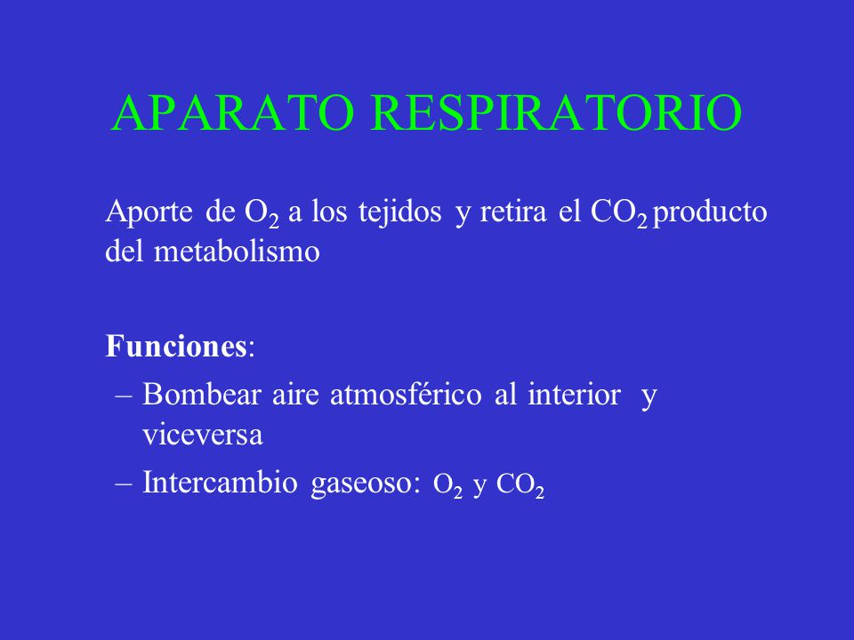 APARATO RESPIRATORIO Aporte de O2 a los tejidos y retira el CO2 producto del metabolismo. Funciones: