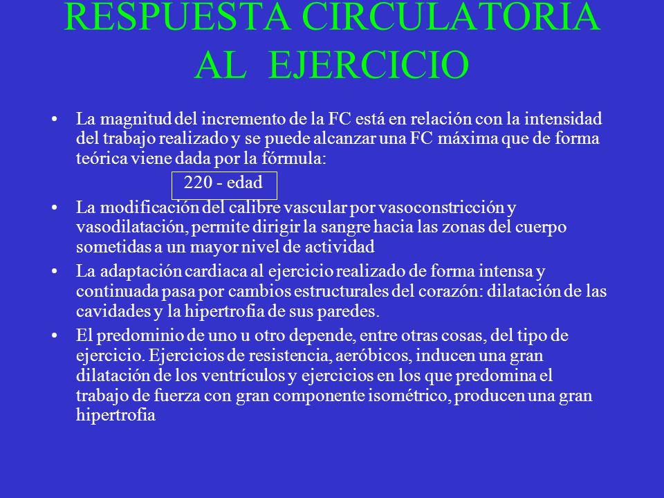 RESPUESTA CIRCULATORIA AL EJERCICIO