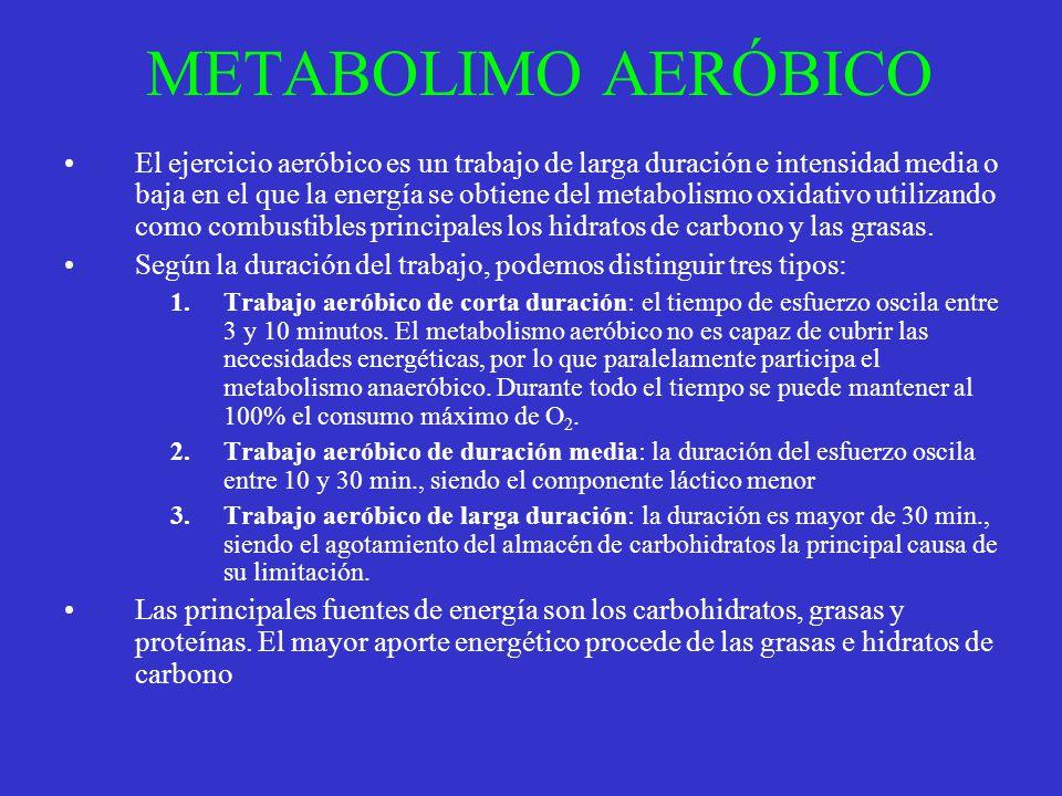METABOLIMO AERÓBICO