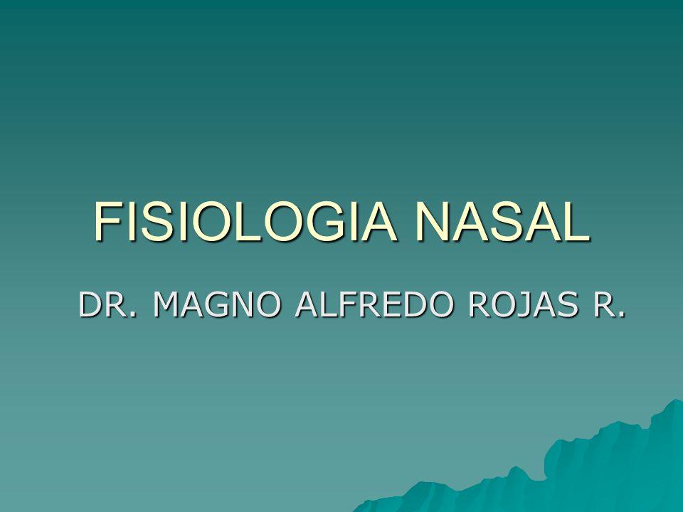 DR. MAGNO ALFREDO ROJAS R.