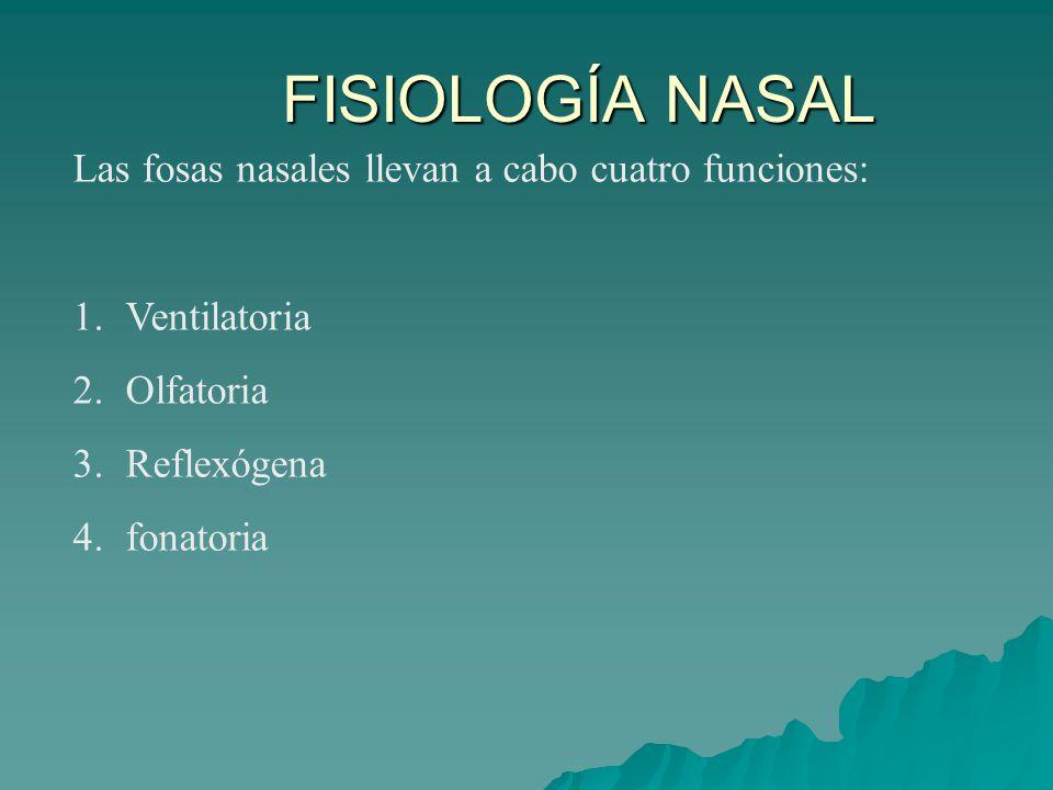 FISIOLOGÍA NASAL Las fosas nasales llevan a cabo cuatro funciones: