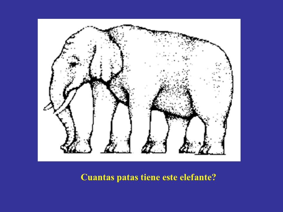 Cuantas patas tiene este elefante