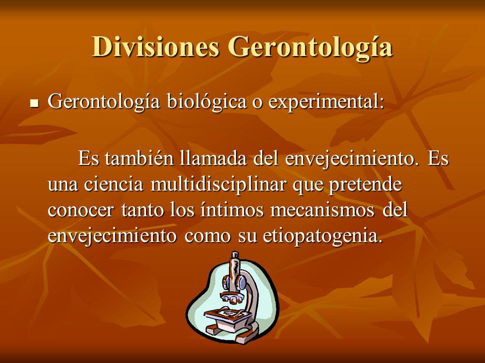 Divisiones Gerontología