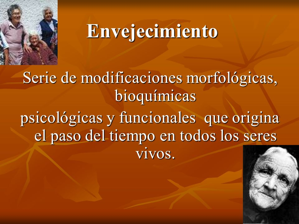 Serie de modificaciones morfológicas, bioquímicas