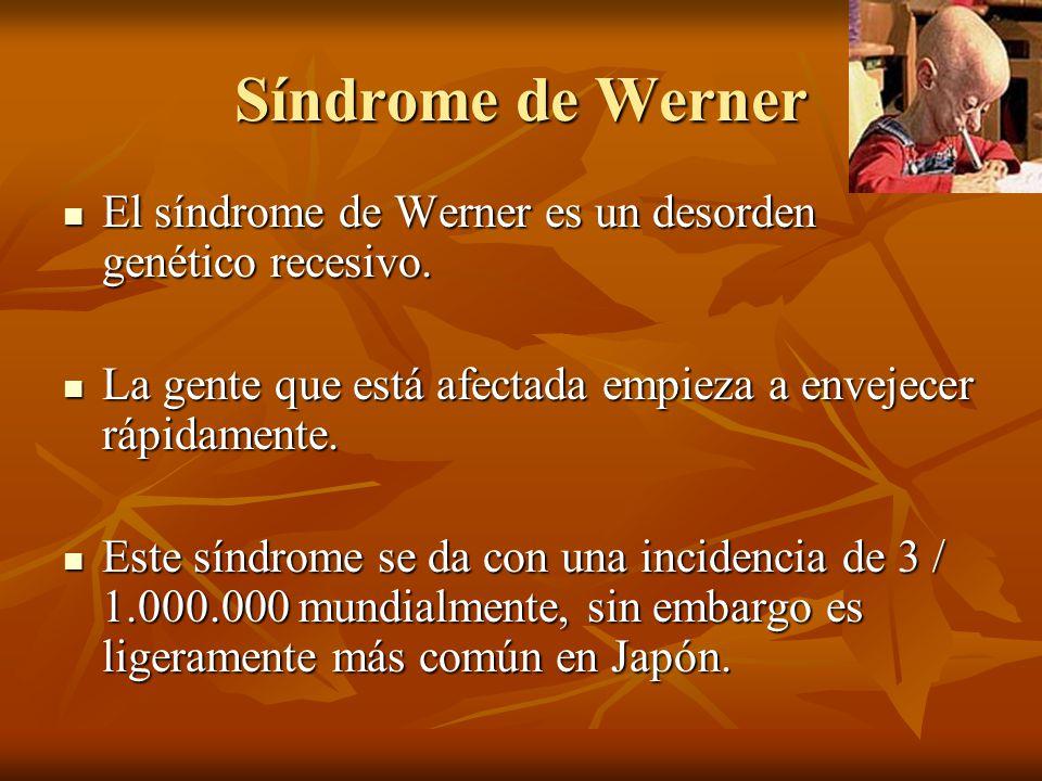 Síndrome de Werner El síndrome de Werner es un desorden genético recesivo. La gente que está afectada empieza a envejecer rápidamente.