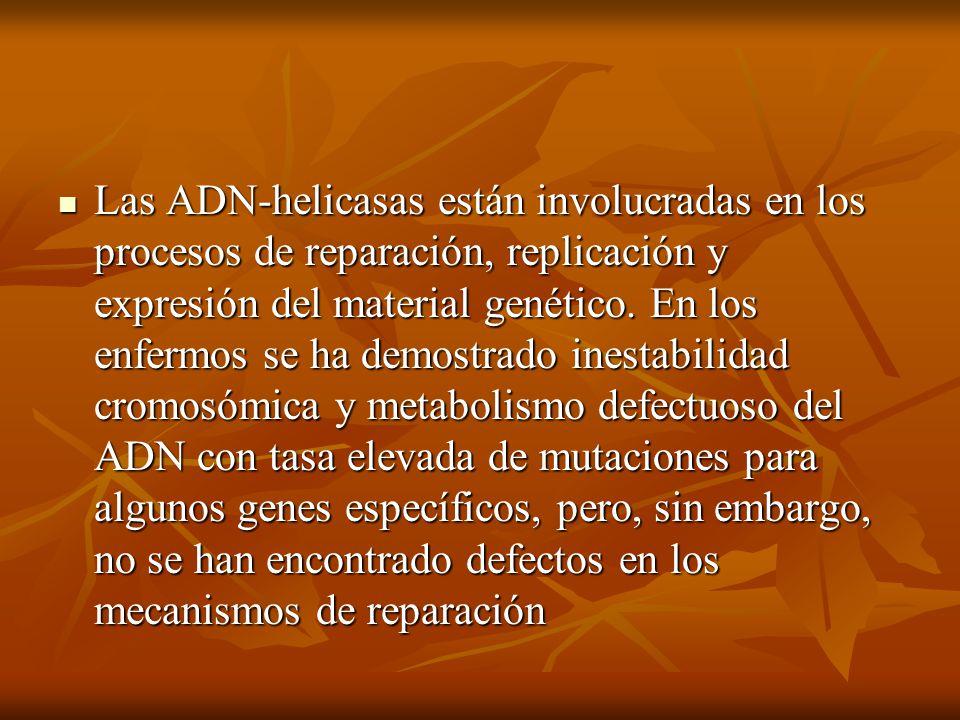Las ADN-helicasas están involucradas en los procesos de reparación, replicación y expresión del material genético.