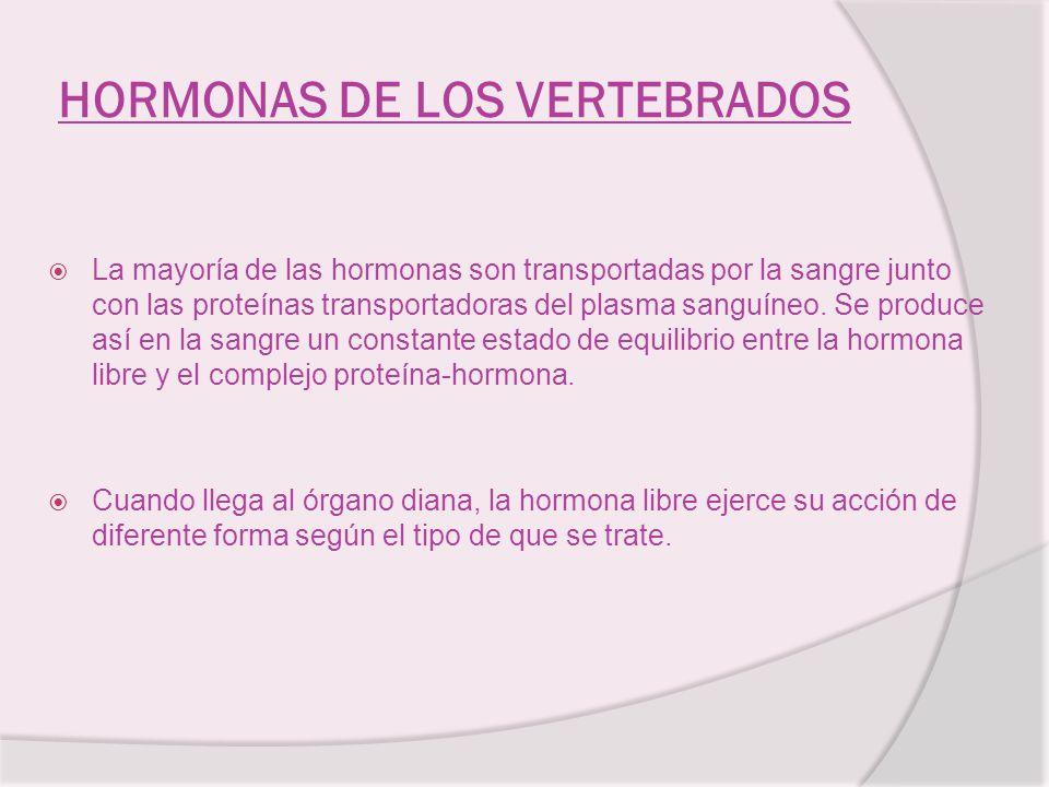 HORMONAS DE LOS VERTEBRADOS