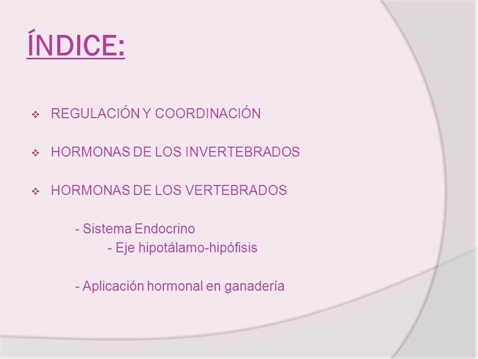 ÍNDICE: REGULACIÓN Y COORDINACIÓN HORMONAS DE LOS INVERTEBRADOS