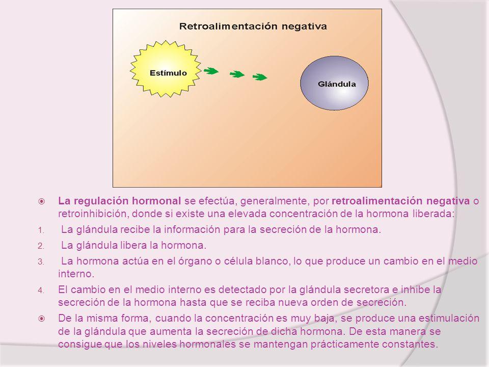 La regulación hormonal se efectúa, generalmente, por retroalimentación negativa o retroinhibición, donde si existe una elevada concentración de la hormona liberada: