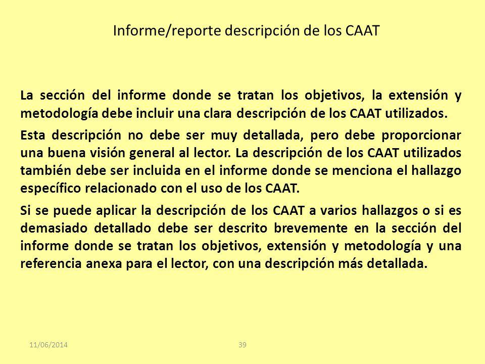 Informe/reporte descripción de los CAAT