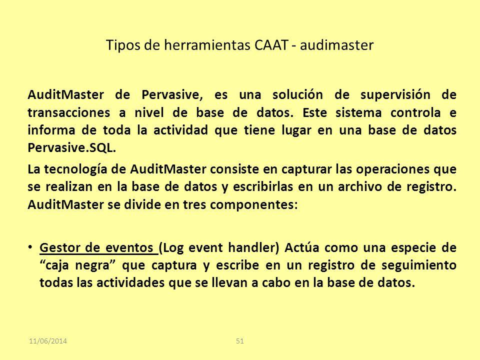 Tipos de herramientas CAAT - audimaster