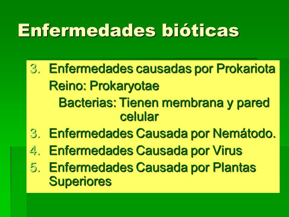 Enfermedades bióticas