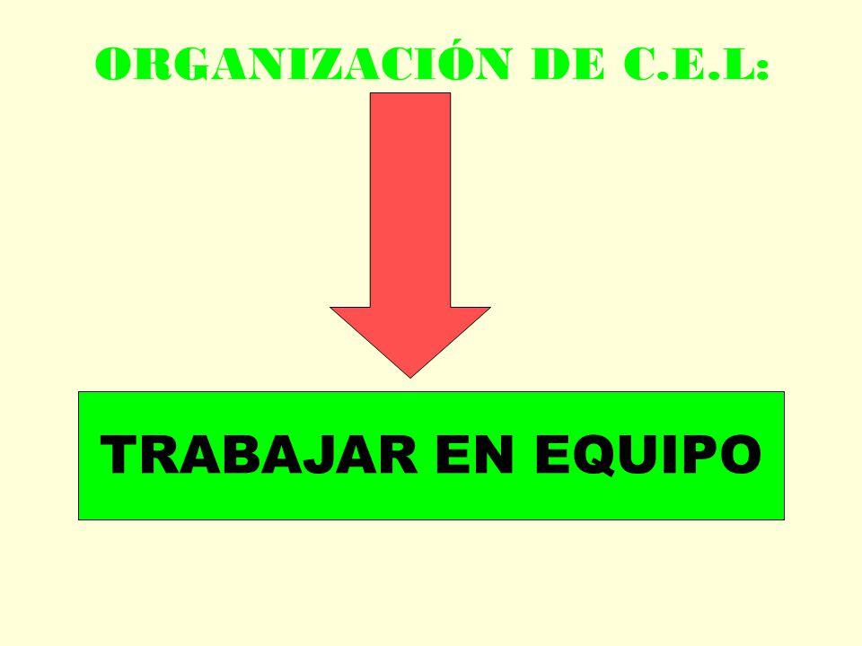ORGANIZACIÓN DE C.E.L: TRABAJAR EN EQUIPO