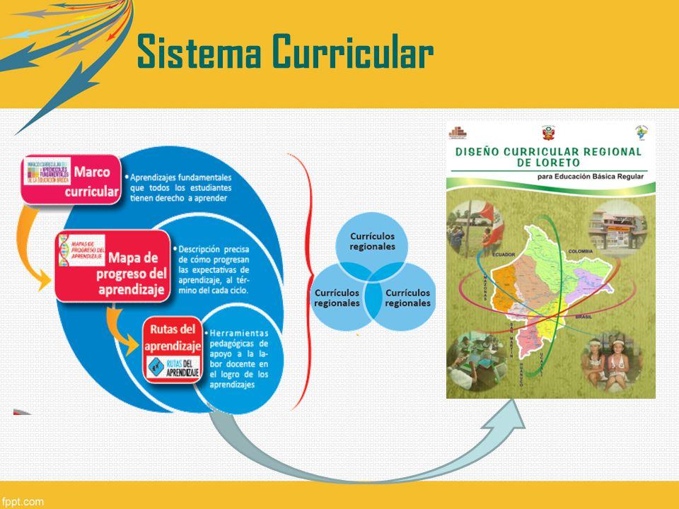 Sistema Curricular Cada gobierno regional tiene que adecuar este trabajo a su región. 7