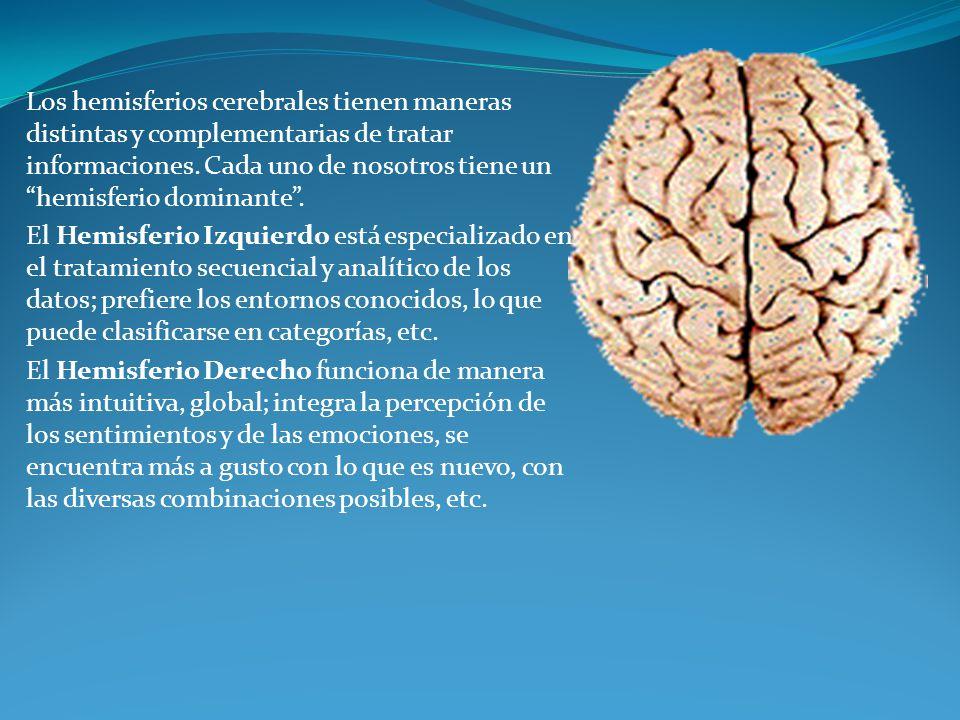 Los hemisferios cerebrales tienen maneras distintas y complementarias de tratar informaciones. Cada uno de nosotros tiene un hemisferio dominante .