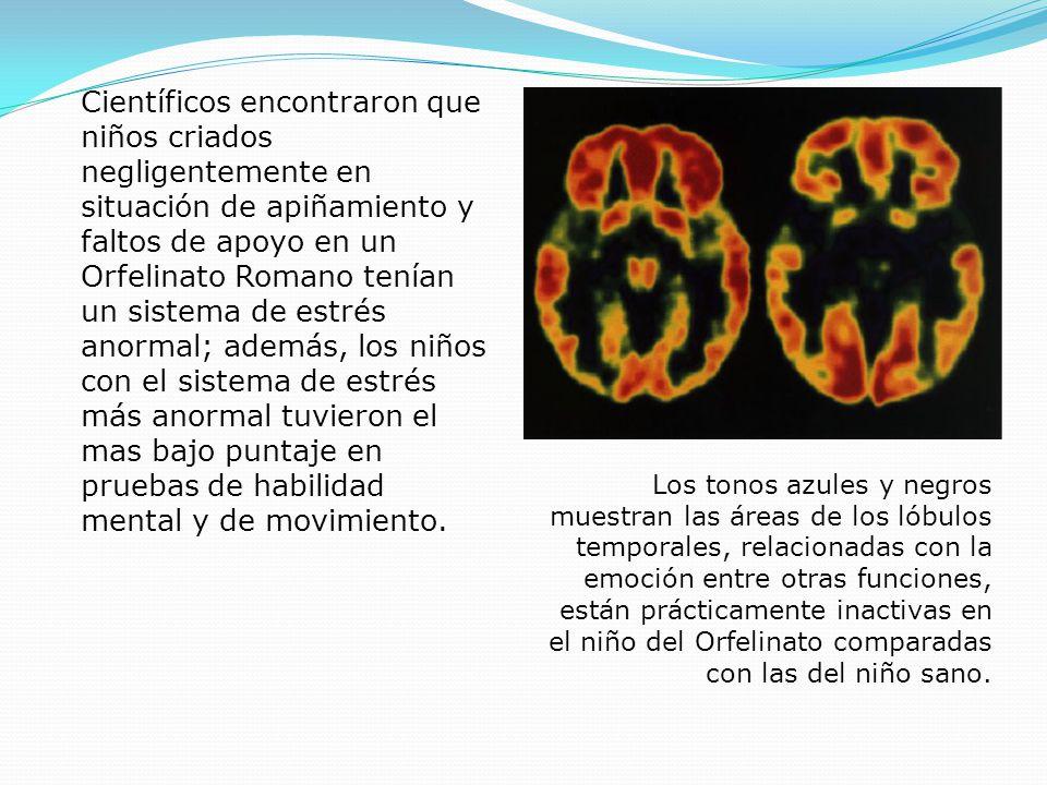 Científicos encontraron que niños criados negligentemente en situación de apiñamiento y faltos de apoyo en un Orfelinato Romano tenían un sistema de estrés anormal; además, los niños con el sistema de estrés más anormal tuvieron el mas bajo puntaje en pruebas de habilidad mental y de movimiento.