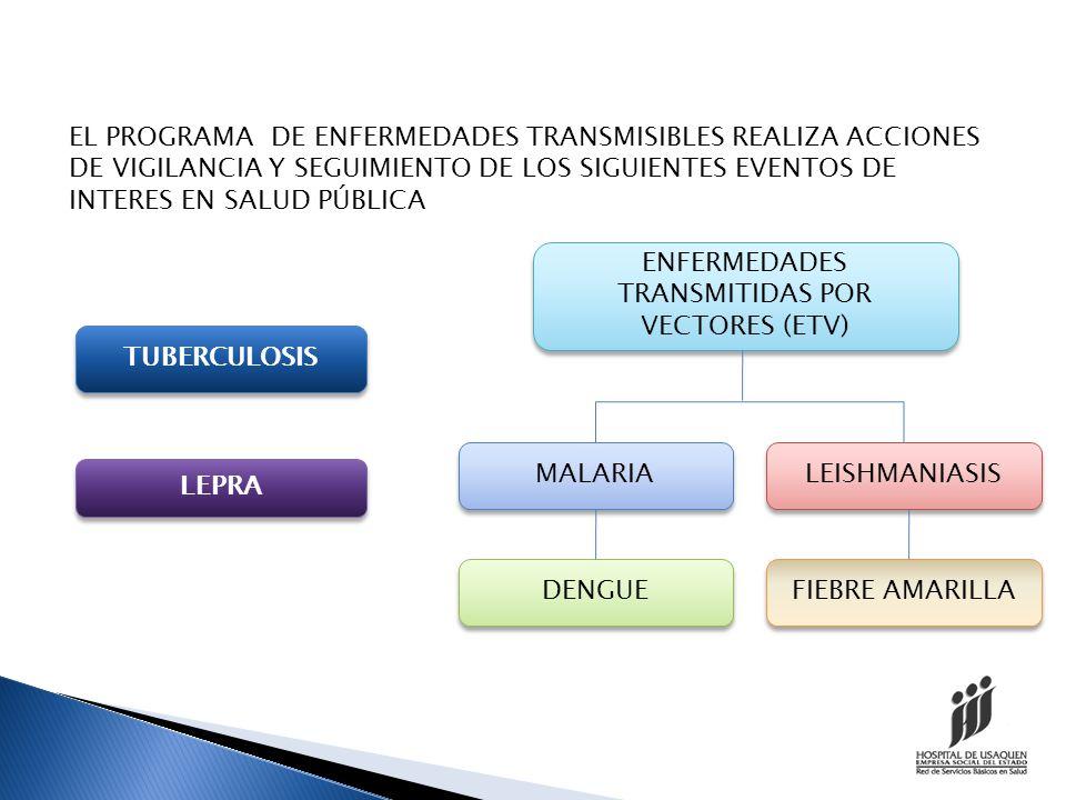 ENFERMEDADES TRANSMITIDAS POR VECTORES (ETV)