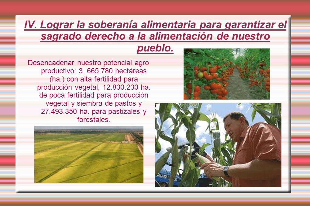 IV. Lograr la soberanía alimentaria para garantizar el sagrado derecho a la alimentación de nuestro pueblo.