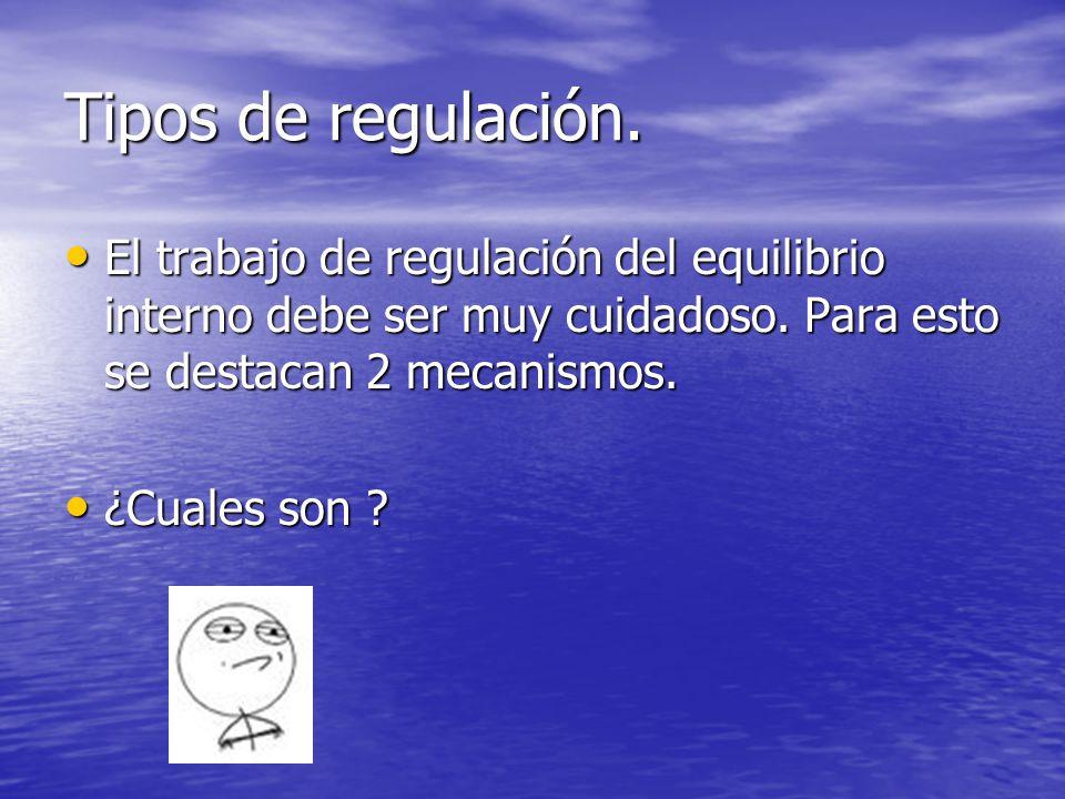 Tipos de regulación. El trabajo de regulación del equilibrio interno debe ser muy cuidadoso. Para esto se destacan 2 mecanismos.