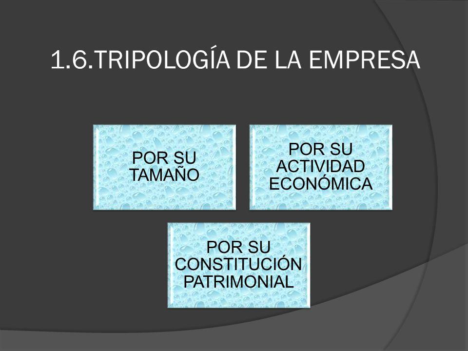 1.6.TRIPOLOGÍA DE LA EMPRESA