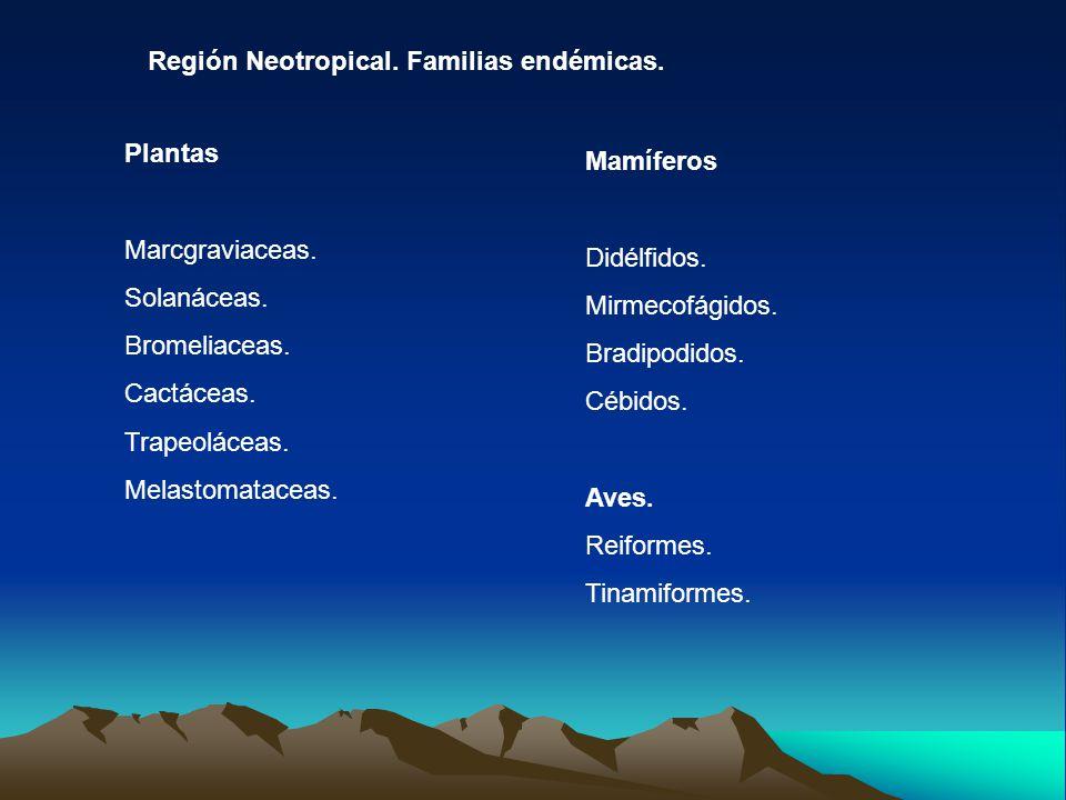 Región Neotropical. Familias endémicas.