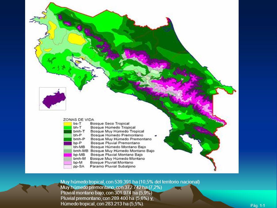 Muy húmedo tropical, con 539.391 ha (10,5% del territorio nacional)