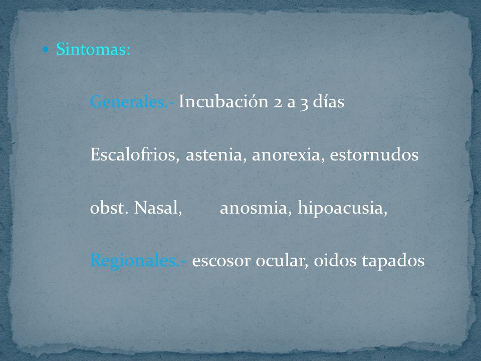 Escalofrios, astenia, anorexia, estornudos