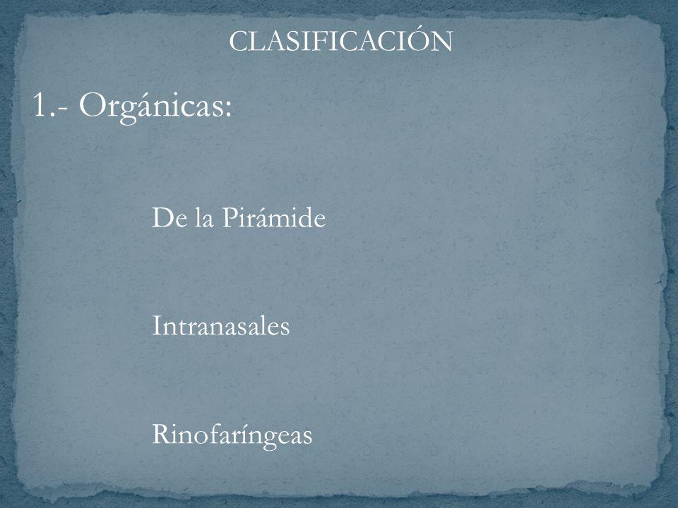 CLASIFICACIÓN 1.- Orgánicas: De la Pirámide Intranasales Rinofaríngeas