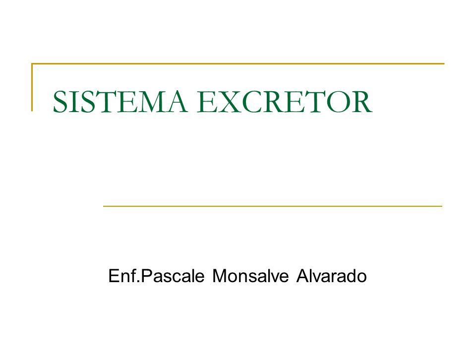 Enf.Pascale Monsalve Alvarado