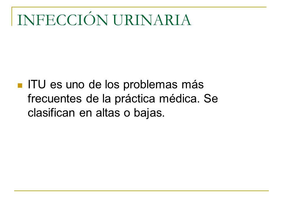 INFECCIÓN URINARIA ITU es uno de los problemas más frecuentes de la práctica médica.