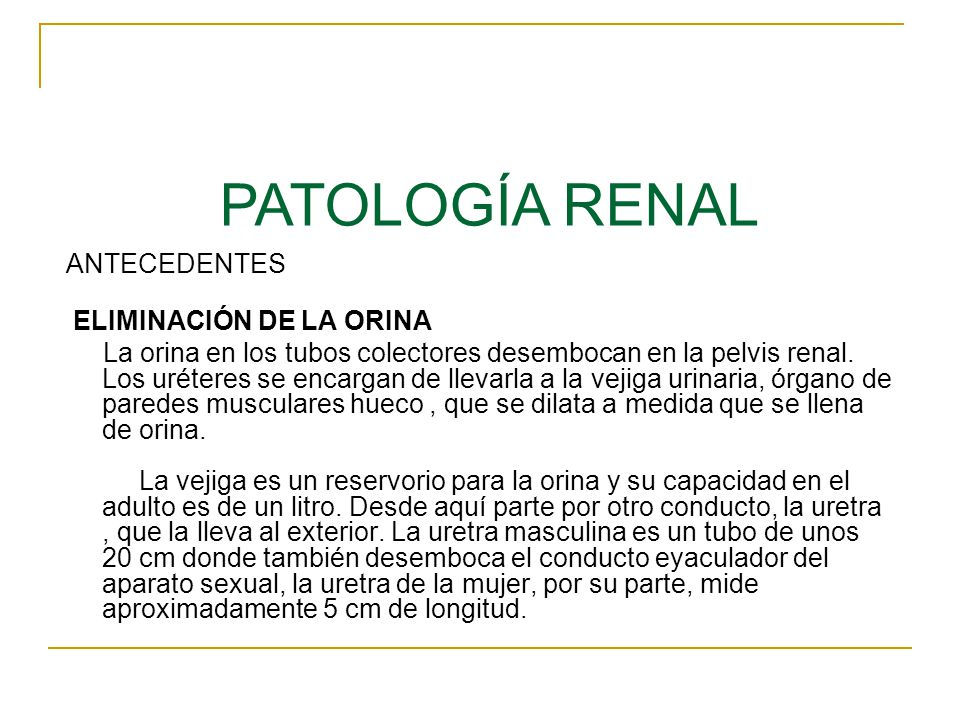 PATOLOGÍA RENAL ANTECEDENTES ELIMINACIÓN DE LA ORINA