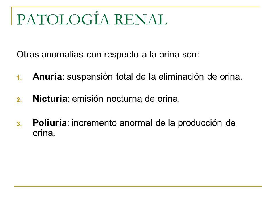 PATOLOGÍA RENAL Otras anomalías con respecto a la orina son: