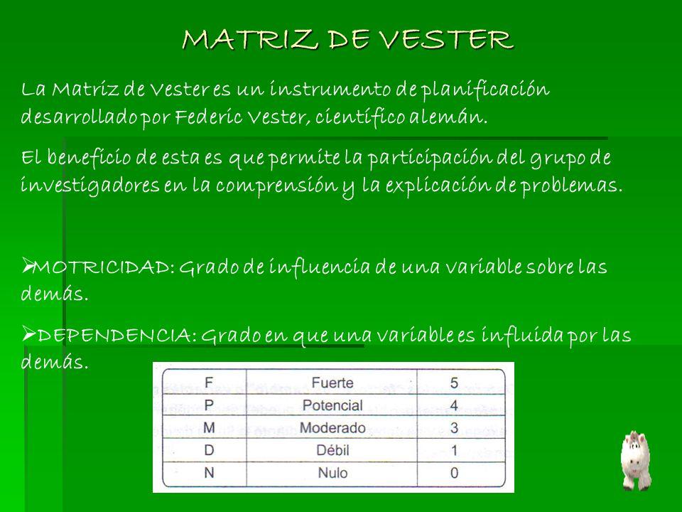 MATRIZ DE VESTER La Matriz de Vester es un instrumento de planificación desarrollado por Federic Vester, científico alemán.