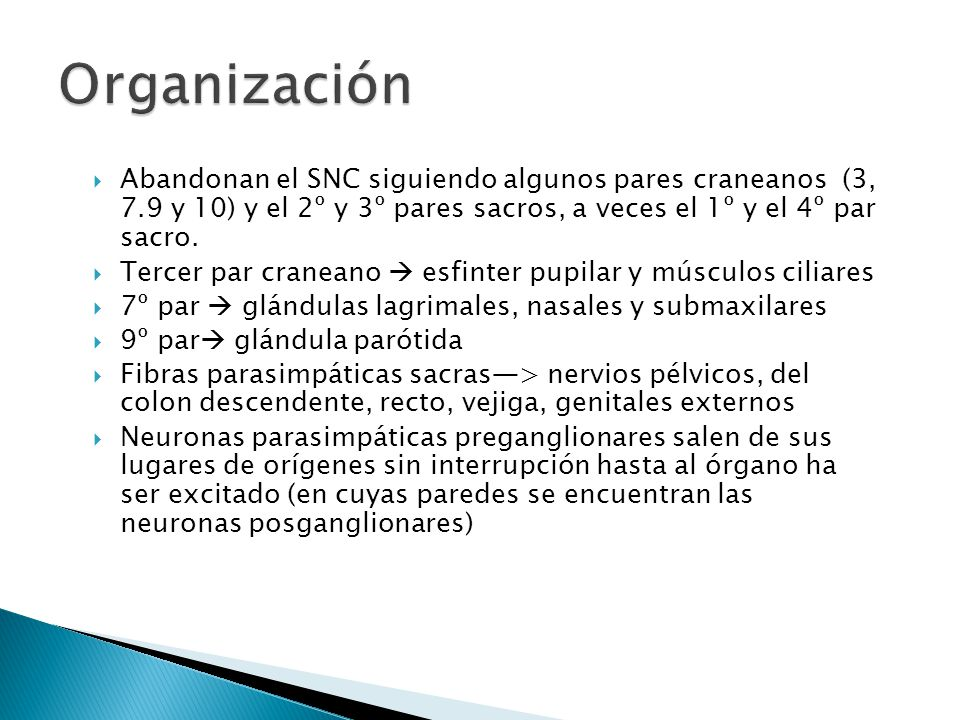 Organización Abandonan el SNC siguiendo algunos pares craneanos (3, 7.9 y 10) y el 2º y 3º pares sacros, a veces el 1º y el 4º par sacro.