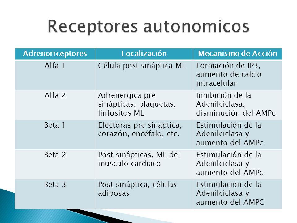 Receptores autonomicos