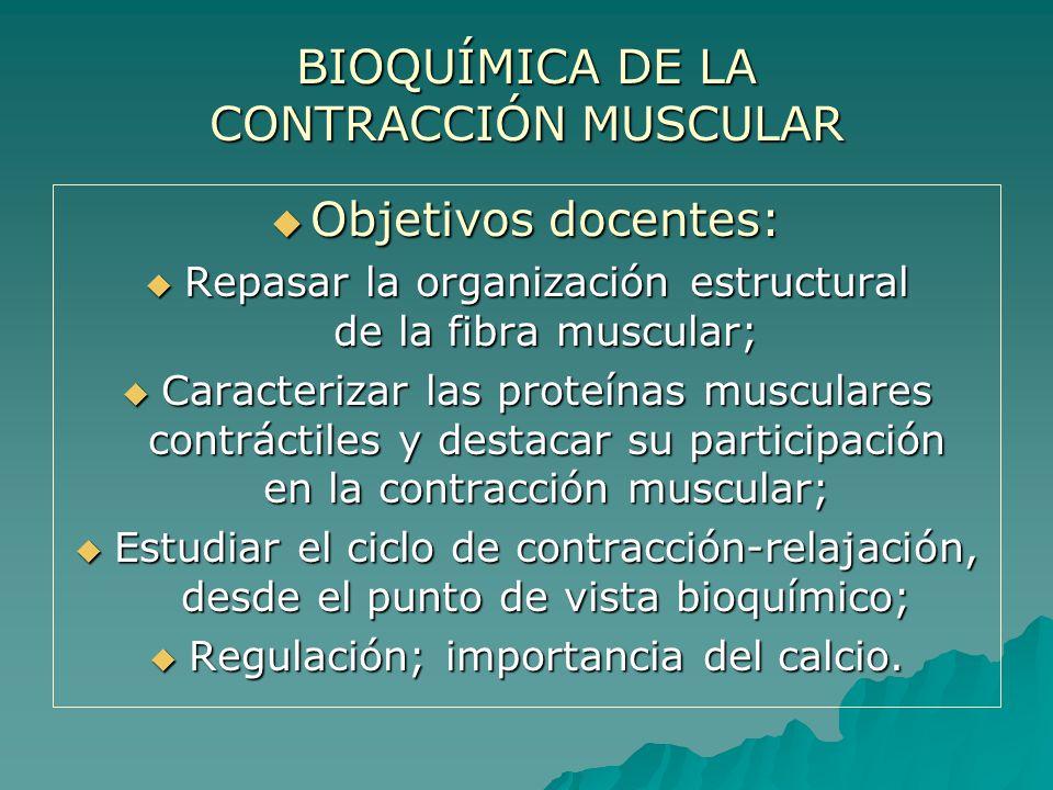 BIOQUÍMICA DE LA CONTRACCIÓN MUSCULAR