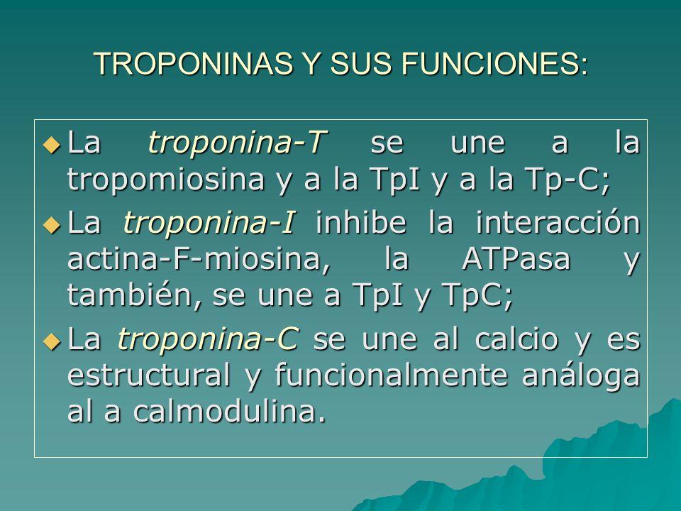 TROPONINAS Y SUS FUNCIONES: