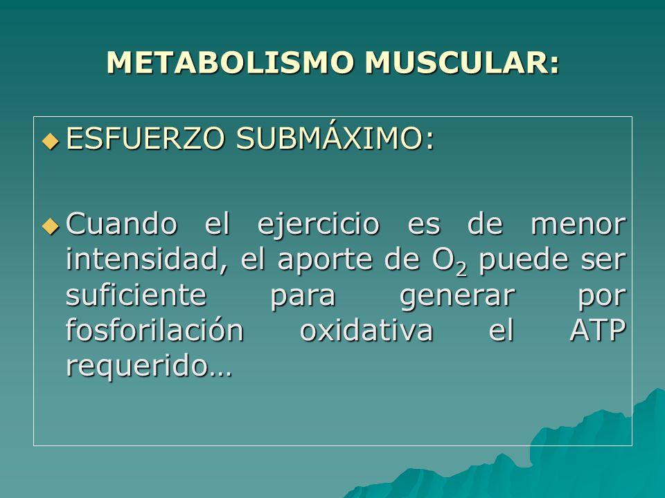 METABOLISMO MUSCULAR: