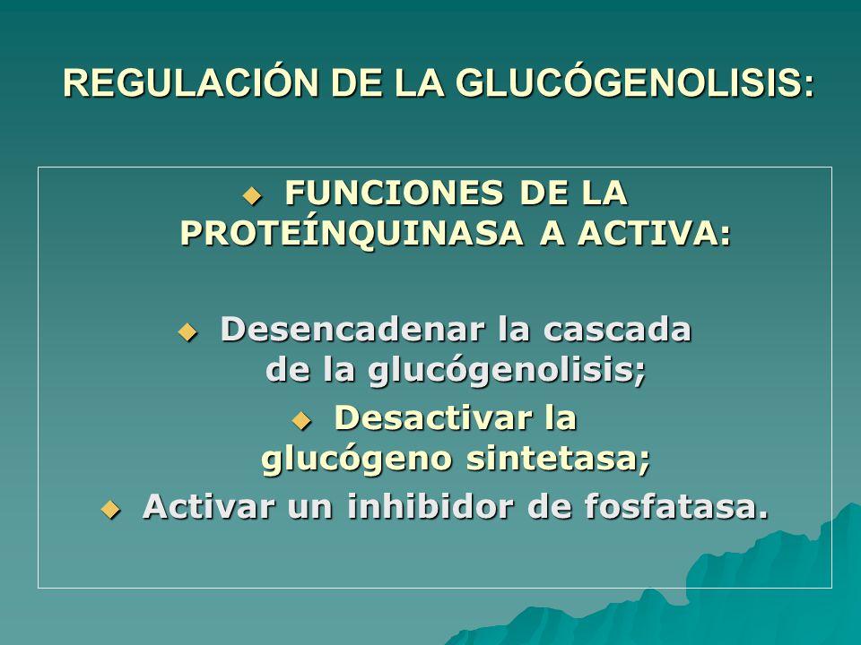 REGULACIÓN DE LA GLUCÓGENOLISIS: