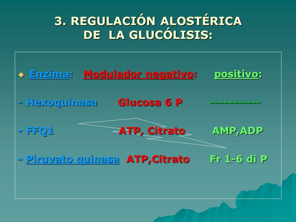 3. REGULACIÓN ALOSTÉRICA DE LA GLUCÓLISIS: